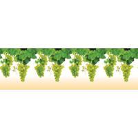 Кухонный фартук (стеновая панель) из пластика «Виноград», 1000 мм